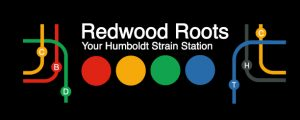 Redwood Roots logo